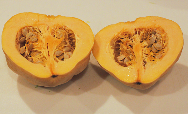 inside of Thelma Sanders squash