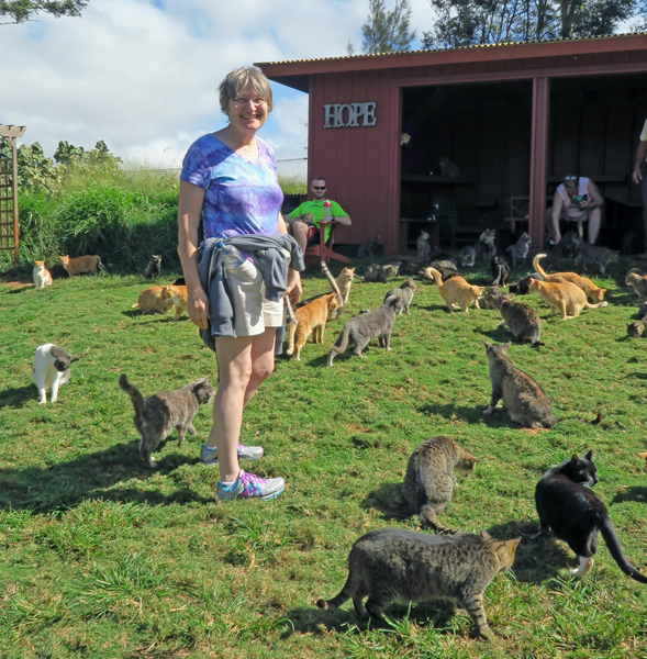 Lynda checking out the kitties