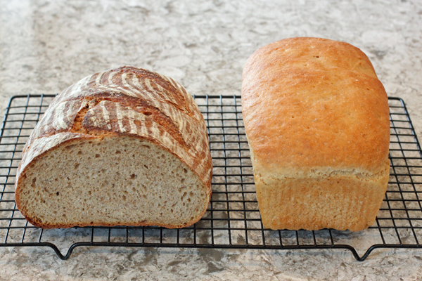 No-Knead Sourdough and Golden Kamut breads