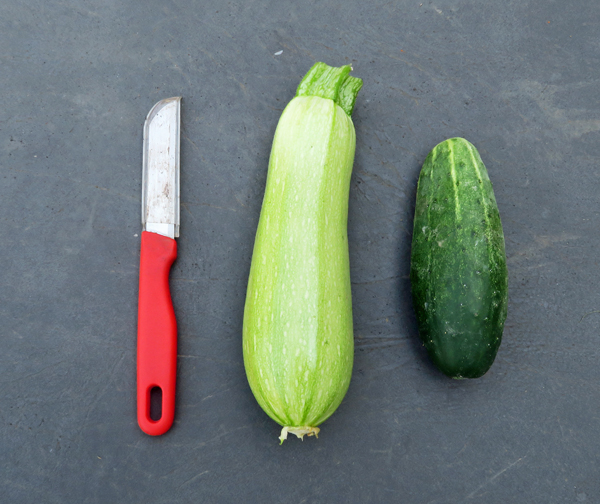 Clarimore zucchini and Excelsior cucumber