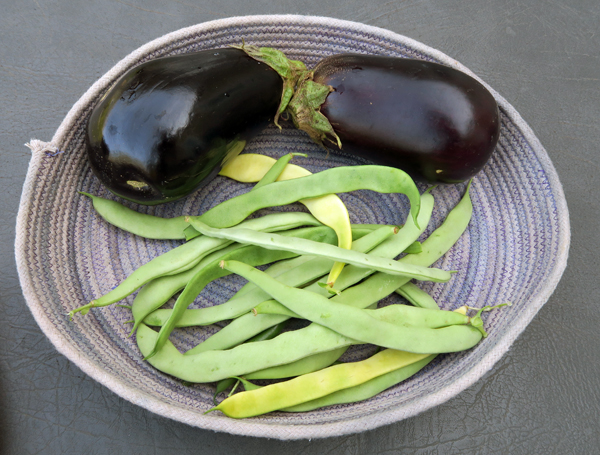 eggplant and pole beans