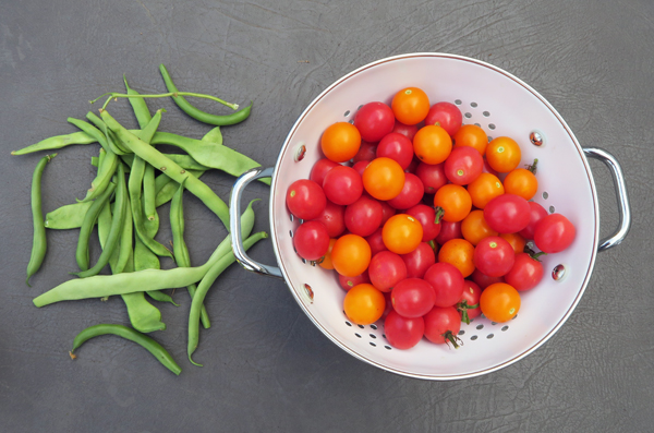 pole beans with Sun Sugar and Sunpeach tomatoes
