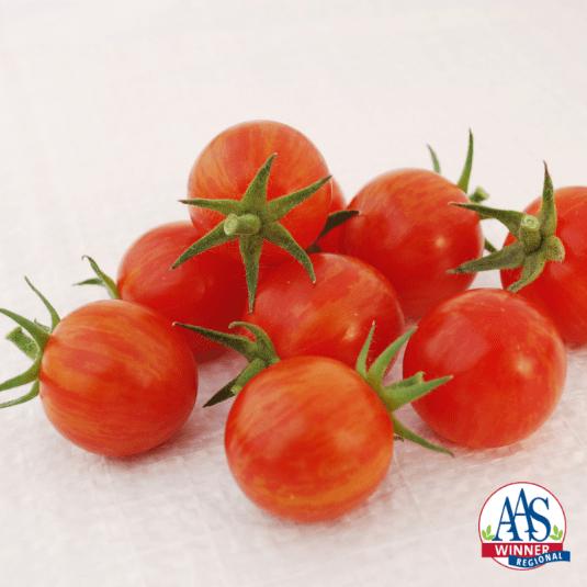 Tomato Sparky XSL