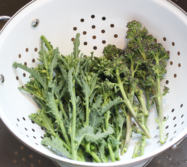 kale rapini and purple sprouting broccoli