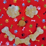 sweet-potato-apple-dog-treats-0931