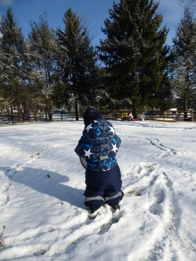 My son dressed like the Danish kids in snowsuits all winter long - then cold weather is not a problem