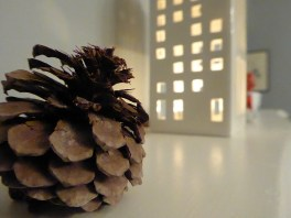 Pine cone and Kahler light house