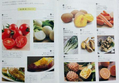 オイシックス 珍野菜 トロなす 生キャラメルイモ カボッコリー