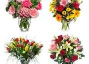 Des Fleurs pour ma Maman avec Flora Queen
