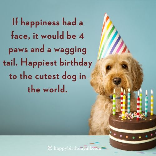 Super Cute Happy Birthday Wishes For Dog With Pictures