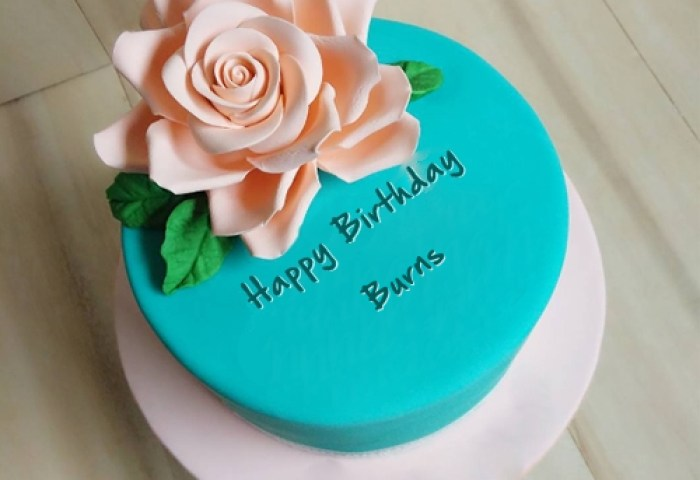 Beautiful Best Birthday Cake For Burns