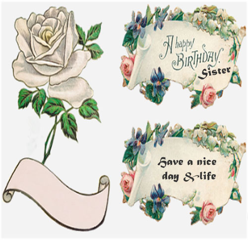 Happy Birthday Sister photo with quotes for whatsapp status