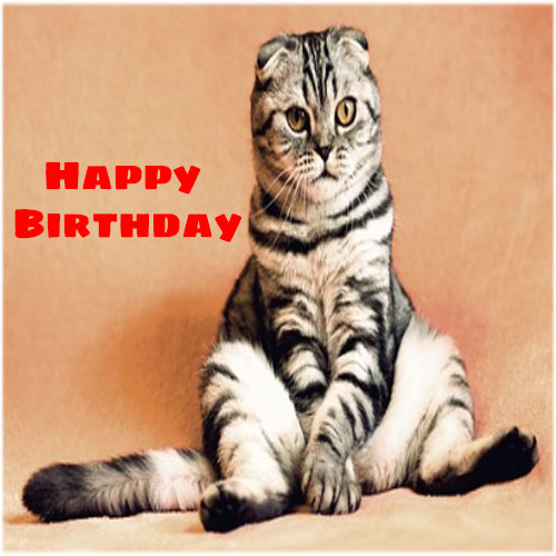 Funny happy birthday images for her free hd download