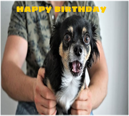 Funny happy birthday images pics for friend free hd download