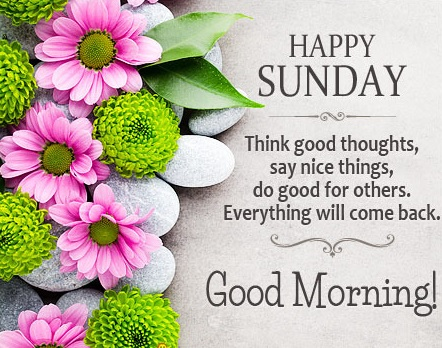 20 Beautiful Images To Wish Happy Sunday To Friends And Family Happy Birthday To You Dear