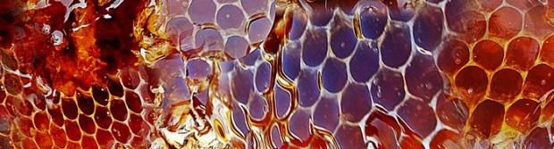 remplacer le miel comment par quoi