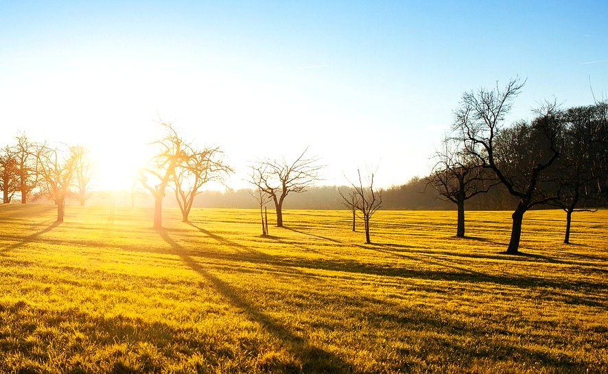 10 astuces pour se mettre de bonne humeur le matin