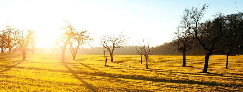 10 astuces pour se mettre de bonne humeur le matin et commencer sa journée du bon pied!