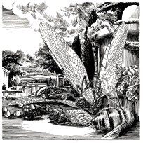 Dode Watterjuffer, After Jan Weenix. Illustration from An Illustrated History of Domestic Arthropods. 2017