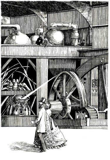 1862 World's Fair. Illustration from An Illustrated History of Domestic Arthropods. Ink on paper. 2017