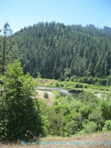 Former Cabin Site