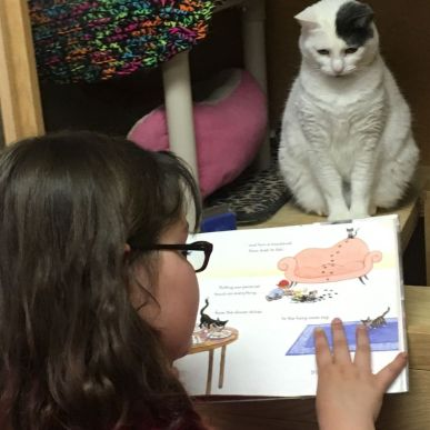 Girl reading at Purr Me to a kitty