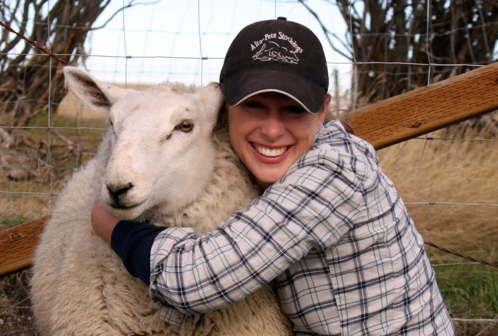 National Hug A Sheep Day – October 31, 2020