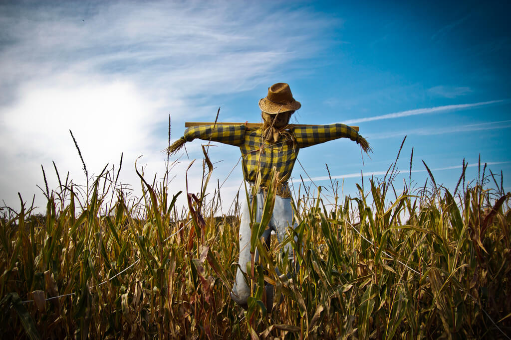 National Build a Scarecrow Day