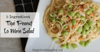 Thai Recipes:  5 Ingredient Thai Peanut Lo Mein Salad