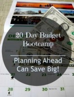 20 Day Budget Challenge:  Planning Ahead Can Save Big!