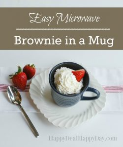 90 Second Easy Microwave Brownie in a Mug
