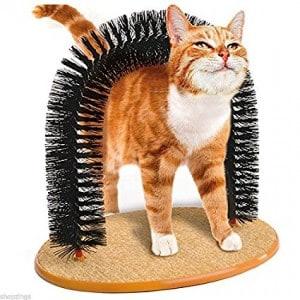 cat-back-scratcher