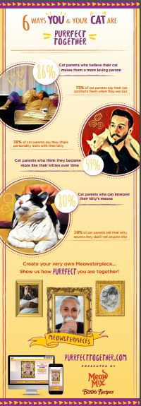 meow mix infographic