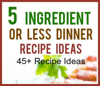 5 Ingredient or Less Dinner Recipes
