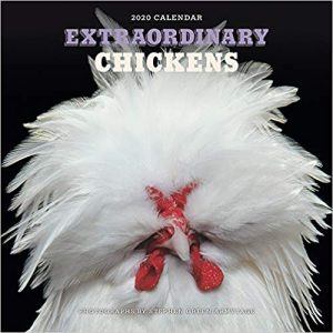 white elephant gift extraordinary chickens