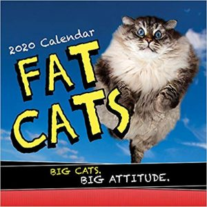 Gift Guide Perfect Gift Ideas For Your Crazy Cat Lady