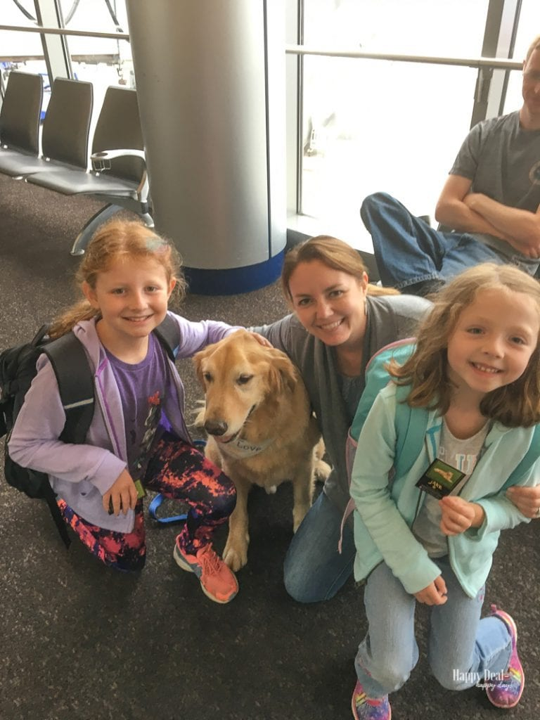 traveling to colorado - meeting therapy dog in airport