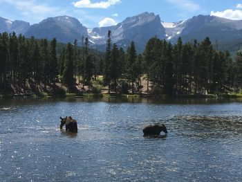 Family Friendly Activities To Do While Traveling to Colorado