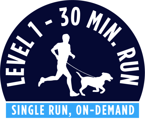 Level 1 - 30 minute running package - Single Run On-Demand