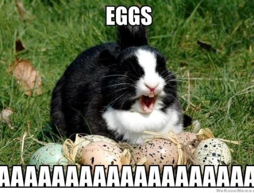 Easter Bunny Memes
