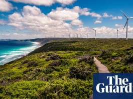 'Immense' potential of renewable energy could propel Australia to net zero 2050 target