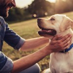 7 Very Important Steps to Become an Eco-Friendly Dog Owner