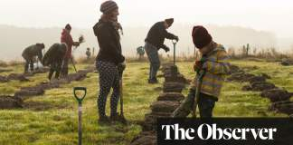 Digging in: a million trees planted as villages and schools join climate battle