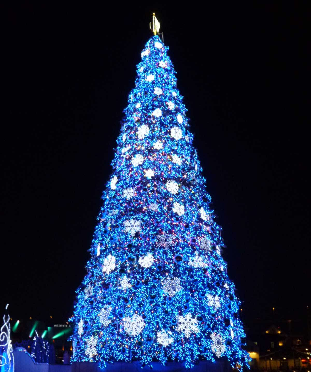 USJクリスマスツリー2011年