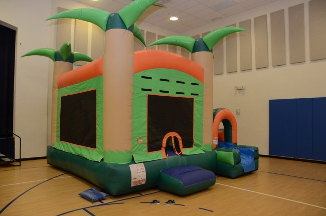 Flamingo Birthday Party in pink and navy - Happy Family Blog, South Florida Bounce, Bounce Houses, Inflatable fun, Inflatable slide