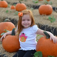 Best Pumpkin Patches in South Florida