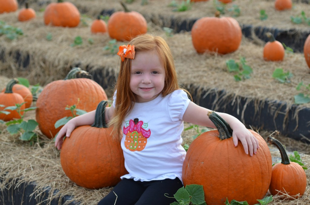 South Florida Fall Pumpkin Patches by Happy Family Blog