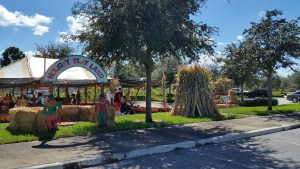 Favorite Pumpkin Patches in South Florida - by Happy Family Blog