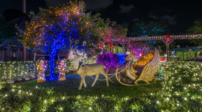 Things to do in Florida at Christmas