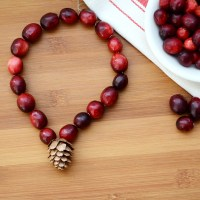 DIY Pine Cone and Cranberry Jewelry